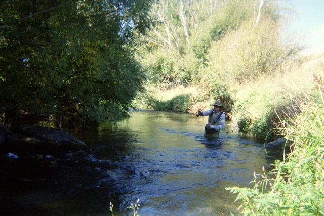 drain_fishing1