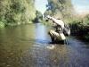 drain_fishing2